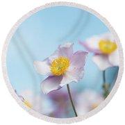 Anemone  Elegans Flowers Round Beach Towel