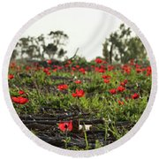 Round Beach Towel featuring the photograph Anemones Forest Panorama by Yoel Koskas