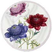 Anenomes Round Beach Towel