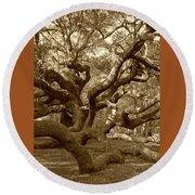 Angel Oak In Sepia Round Beach Towel