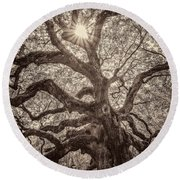 Angel Oak- Sun Beam  Round Beach Towel