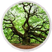 Round Beach Towel featuring the photograph Angel Oak Tree by Jean Haynes