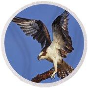 Angel Osprey Round Beach Towel
