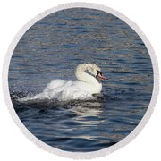 Angry Swan On The Water Round Beach Towel by Michal Boubin