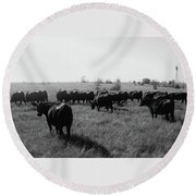 Angus Herd Cow Count Round Beach Towel by Michele Carter