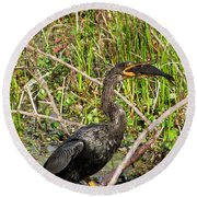Anhinga And Fish  Round Beach Towel