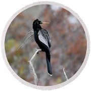 Round Beach Towel featuring the photograph Anhinga by Gary Wightman