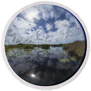 Anhinga Trail 86 Round Beach Towel by Michael Fryd