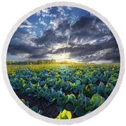 Ankle High In July Round Beach Towel by Phil Koch
