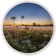 Round Beach Towel featuring the photograph Anne's Lace On Misty Cavendish Meadows by Chris Bordeleau