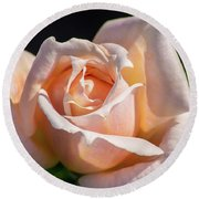 Another Beautiful Pink Rose Round Beach Towel