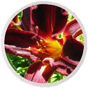 Another Day Another Daylily Round Beach Towel