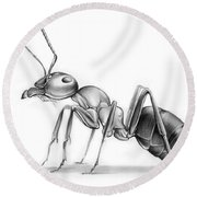 Ant Round Beach Towel by Greg Joens