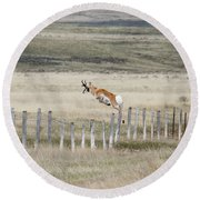 Round Beach Towel featuring the photograph Antelope Jumping Fence 2 by Rebecca Margraf