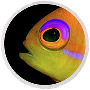 Anthias Round Beach Towel