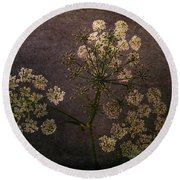 Round Beach Towel featuring the photograph Anthriscus Sylvestris by Randi Grace Nilsberg