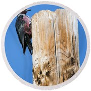 Any Tree Will Do Round Beach Towel by Mike Dawson