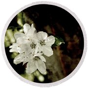 Apple Blossom Paper Round Beach Towel