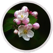 Apple Blossom Time Round Beach Towel by Trey Foerster