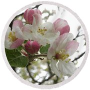 Round Beach Towel featuring the photograph Apple Blossoms - Wild Apple by Angie Rea