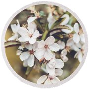 Round Beach Towel featuring the photograph Apple Spice by Christi Kraft