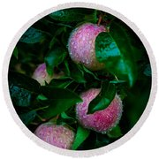 Apples After The Rain Round Beach Towel