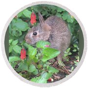 April Rabbit And Columbine Round Beach Towel