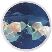 Aquarium Parade Round Beach Towel