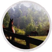 Round Beach Towel featuring the painting Arabian Horses In Field by Debra Crank