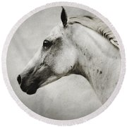 Arabian White Horse Portrait Round Beach Towel