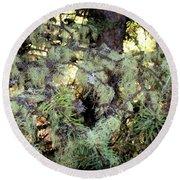 Arboreal Lichens Round Beach Towel