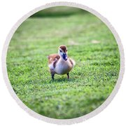 Are You My Mother? Round Beach Towel