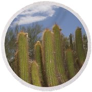 Arizona Cactus Round Beach Towel by Henri Irizarri