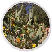 Arizona Cactus Round Beach Towel