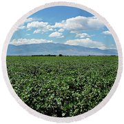 Arizona Cotton Field Round Beach Towel
