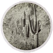 Arizona Desert 2 Round Beach Towel