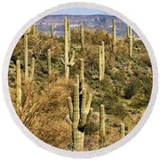 Arizona Desert Round Beach Towel