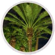 Arizona Palms At Night Round Beach Towel