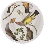 Arkansaw Flycatcher Swallow-tailed Flycatcher Says Flycatcher Round Beach Towel by John James Audubon