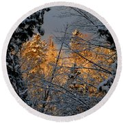 Round Beach Towel featuring the photograph Arrival by Elfriede Fulda