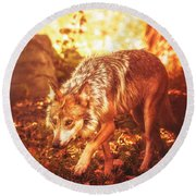Arrival Of Autumn Round Beach Towel