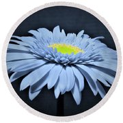 Artic Blue Gerber Daisy Round Beach Towel