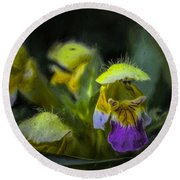 Round Beach Towel featuring the photograph Artistic Hover by Leif Sohlman