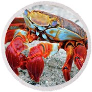 Artistic Nature Red And Blue Rainbow Crab 908 Round Beach Towel