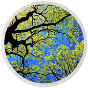 Artsy Tree Canopy Series, Early Spring - # 01 Round Beach Towel