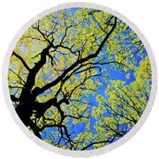 Artsy Tree Canopy Series, Early Spring - # 02 Round Beach Towel