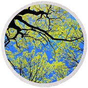 Artsy Tree Canopy Series, Early Spring - # 03 Round Beach Towel