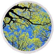 Artsy Tree Canopy Series, Early Spring - # 03 Round Beach Towel