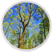 Artsy Tree Series, Early Spring - # 04 Round Beach Towel