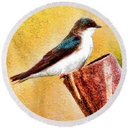 Male Tree Swallow No. 2 Round Beach Towel by Bill Kesler